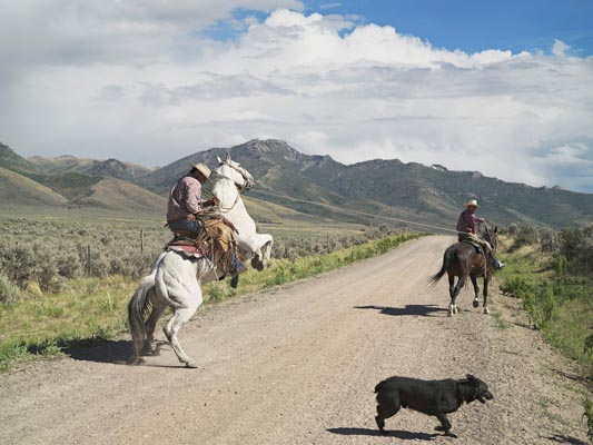 Casey & Rowdy Horse Training, 71 Ranch by Lucas Foglia
