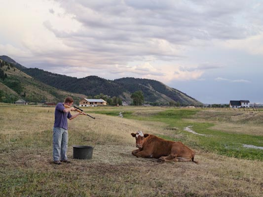 Adam Killing a Cow, Mortensen Family Farm by Lucas Foglia